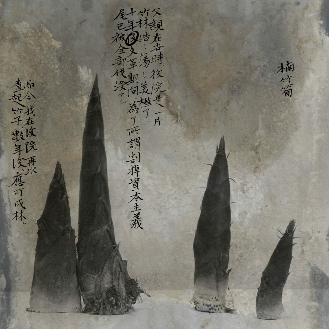 Wei Bi #photobook «Mengxi 2»